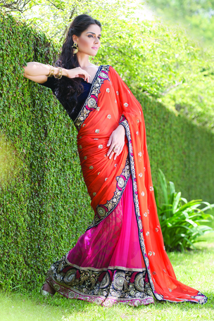 multi colour border saree